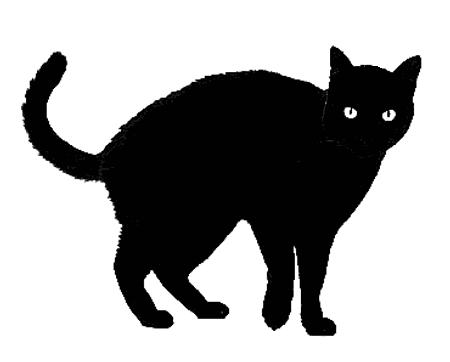 Картинки черных кошек